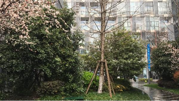 上海达沃进行压力蒸汽灭菌器性能验证的模拟操作培训